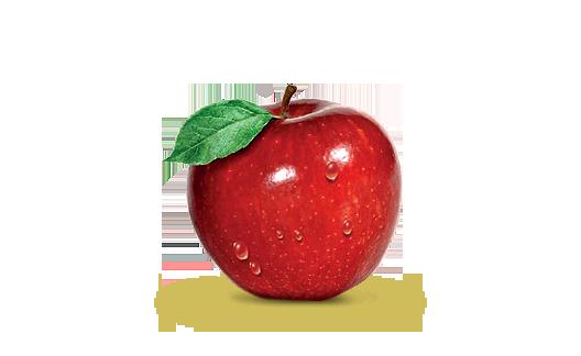 Výsledek obrázku pro jablko